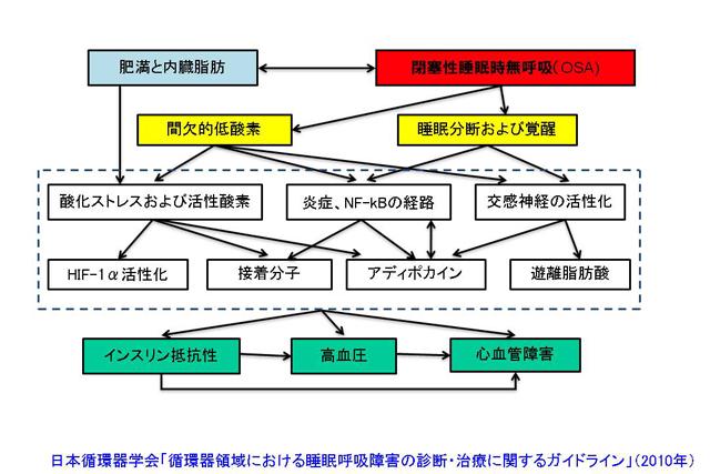 shiomi_fig_021.jpg