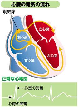 心臓の電気の流れ 説明図