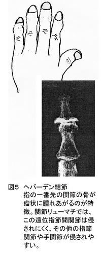 25回図5.jpg