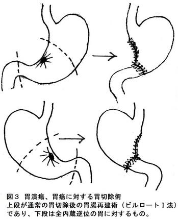 27回図2.jpg