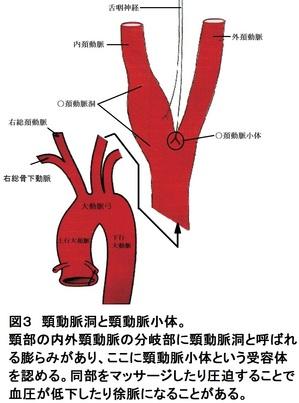 33図4(3).jpg