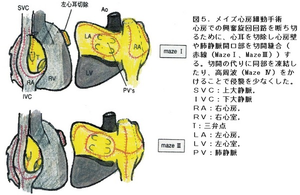 47図5.jpg