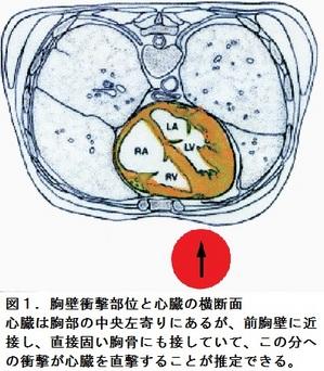 49図1.jpgのサムネイル画像