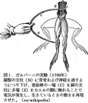50図1.jpg