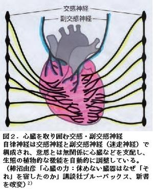 69図-2.jpg