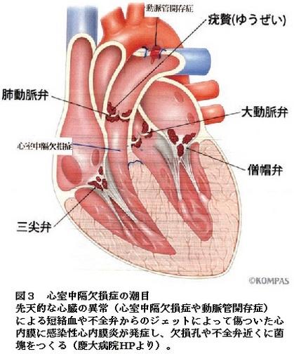 70図3.jpg
