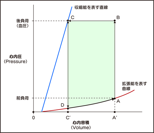 小早川ループ1.jpg