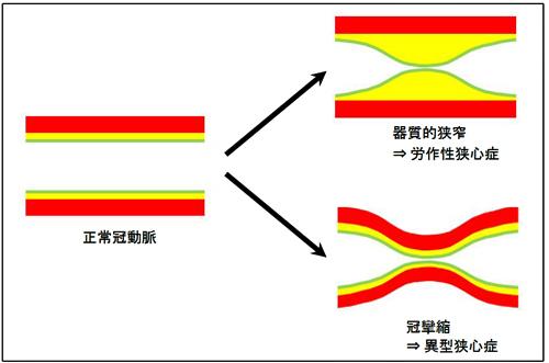 杉下靖図2.jpg