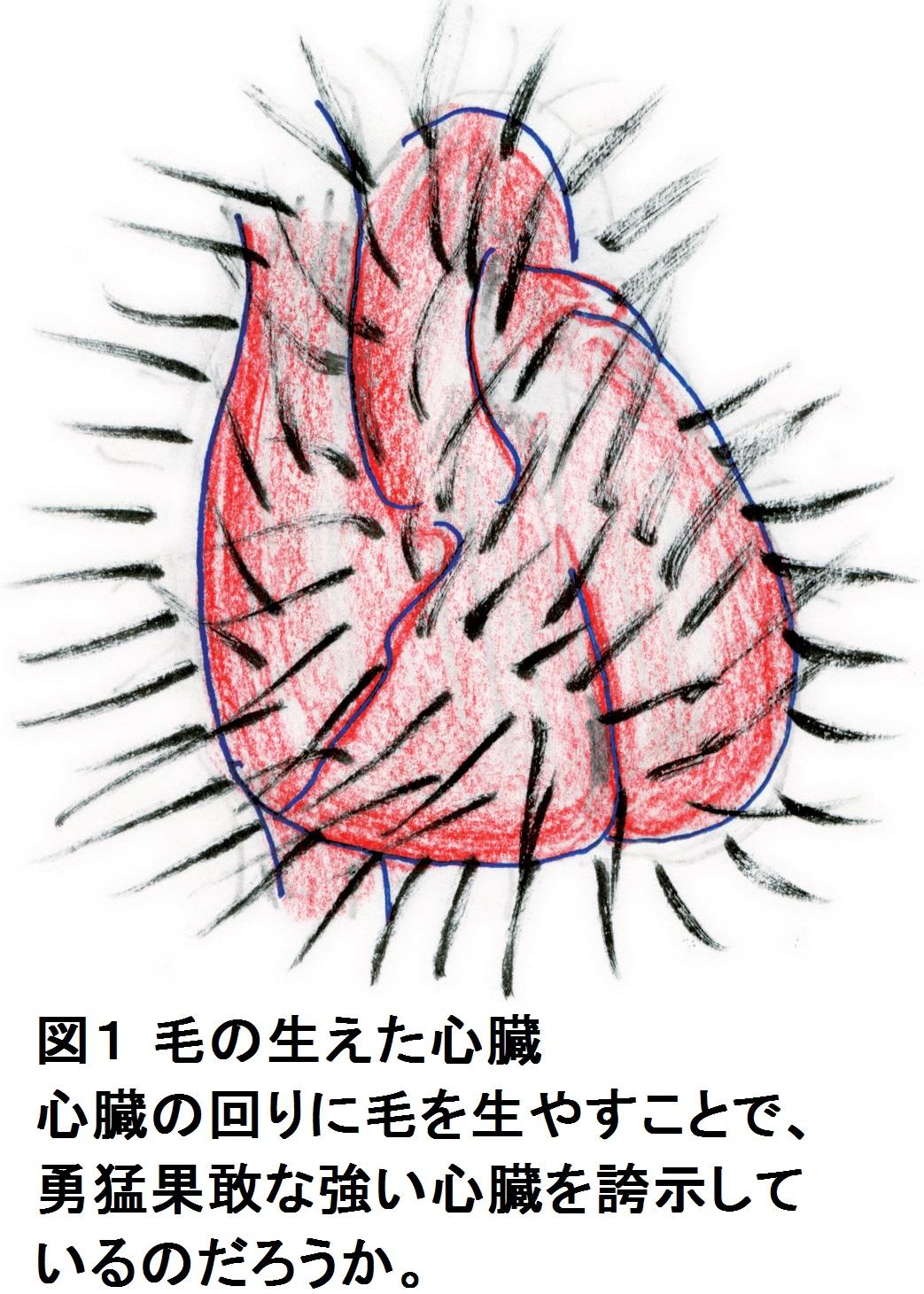 耳寄りな心臓の話(第30話)『心...