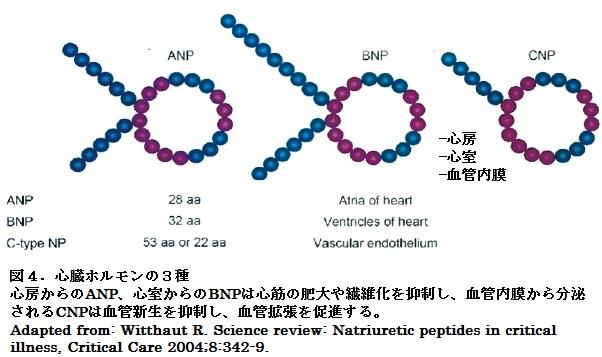 61図4 .jpg