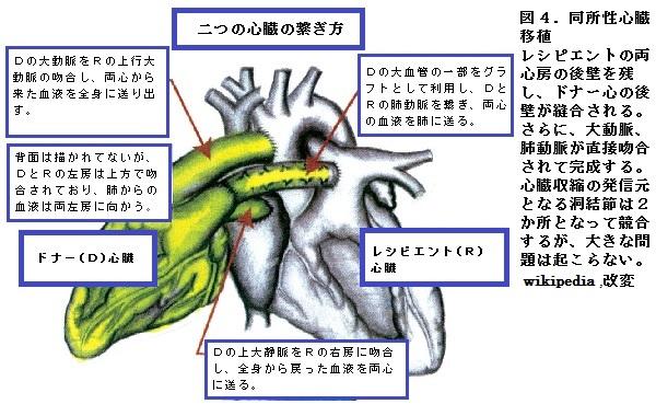 63図4.jpg