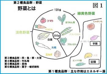 図1 野菜とは.JPG
