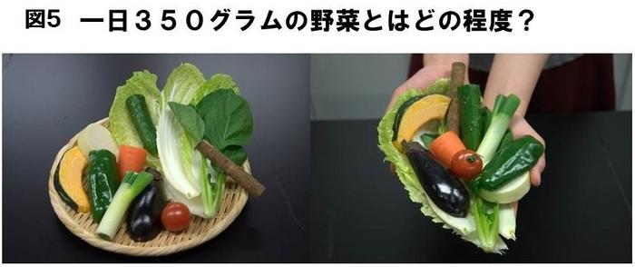 図5野菜の量.JPG