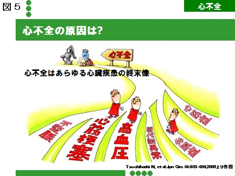 図5心不全の原因.jpg