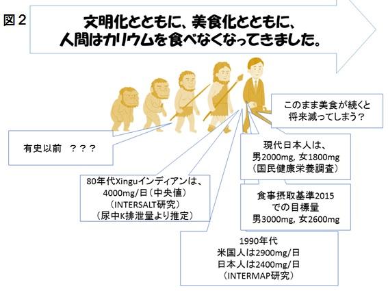 図2カリウム.jpg