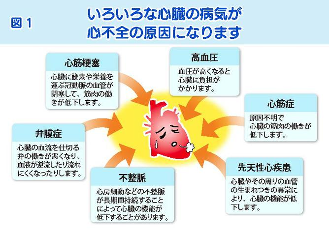 筒井先生スライド-20210803修正_ページ_1.jpg