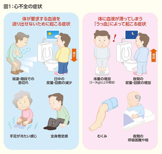 筒井先生図1.jpg